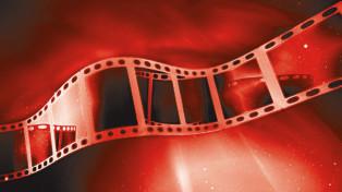 film-stock-900-80